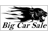Логотип БигКарСейл, ООО